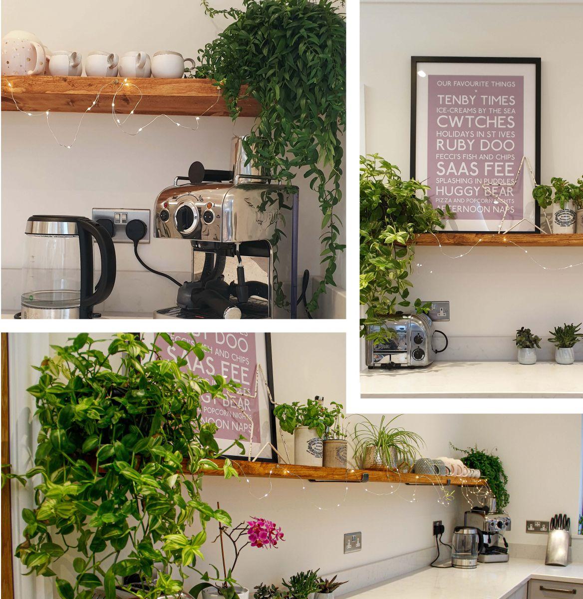 Indoor Plants For Kitchens Kitchen Inspiration Blog Masterclass Kitchens